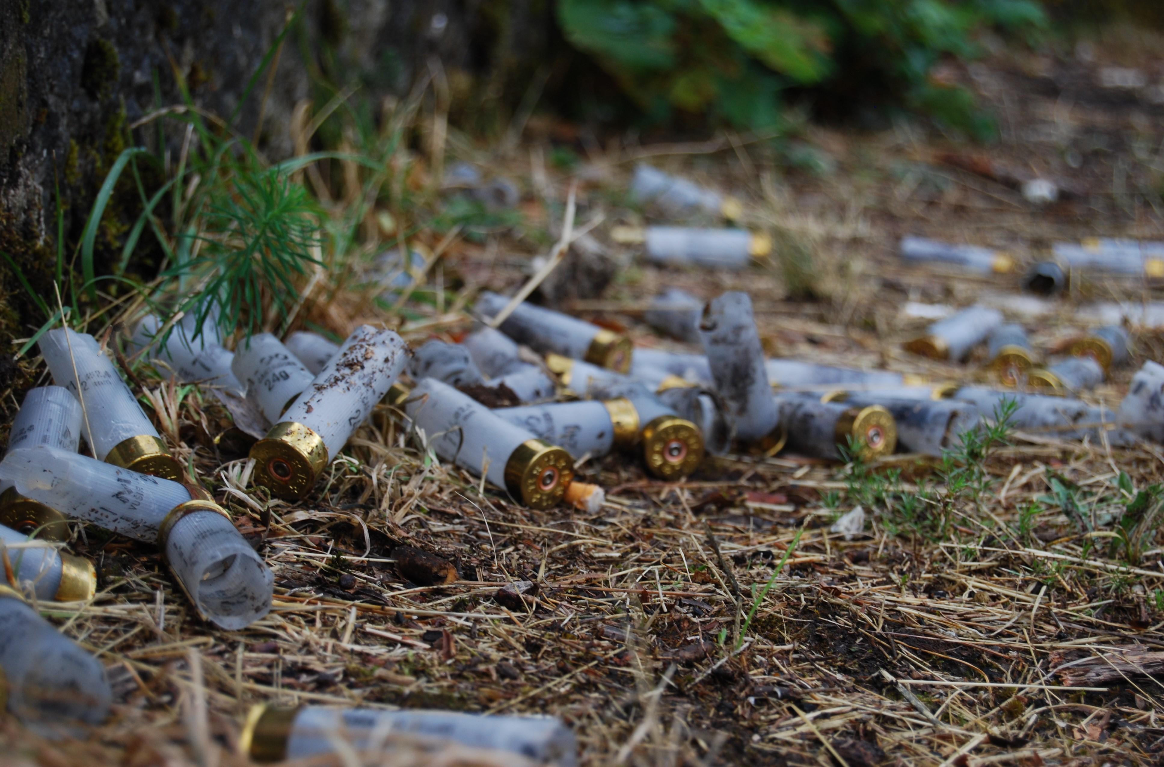 Bullets near Crkvice