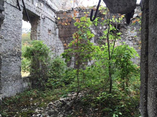 Once the largest bakery in the Balkans, taken back by nature
